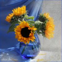 Цветы от Luiza Gelts.  Светлана Петрикевич.