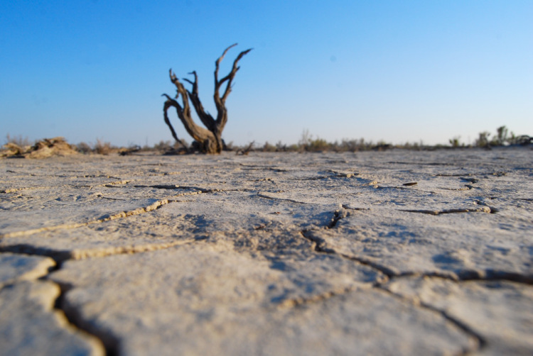 Пустыня Сарыесик Атырау. Очередной пост