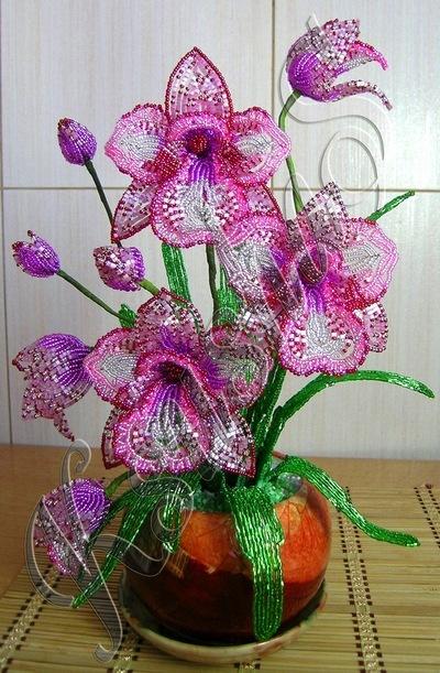 """Орхидея -  """"Розовое настроение """" ."""