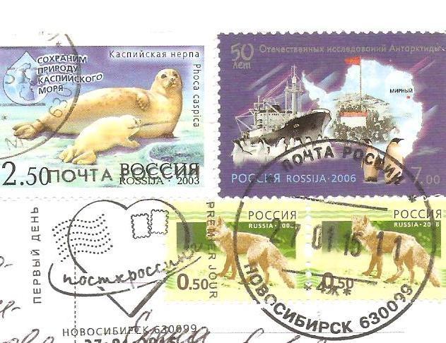 http://data4.gallery.ru/albums/gallery/402930-ff22b-84703635-m750x740-ub9711.jpg